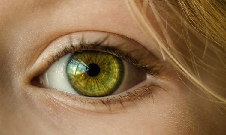 「本物を見る」ことが人生でいかに大事であるかという話
