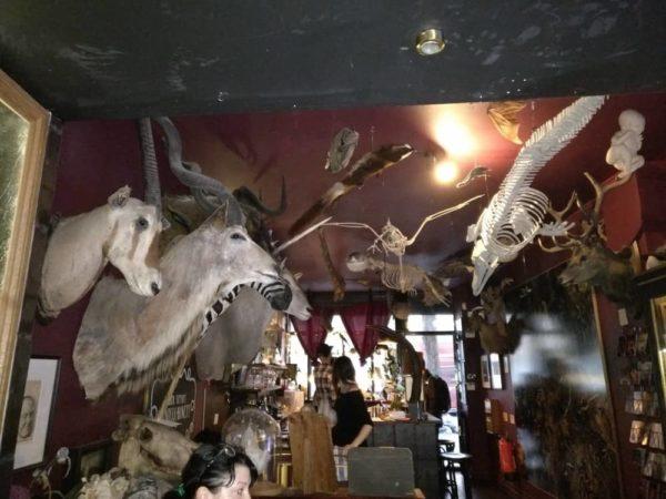 (閲覧注意)ロンドンで一番不思議で不気味なバーに行ってきた。