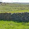 アイルランド旅行で石垣マニアになりかけてしまった話