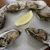 アイルランド料理は魚介とシチューがおすすめ!【レストラン情報あり】