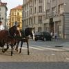 プラハの特徴とおすすめの見どころ【交通・食事など基本情報あり】